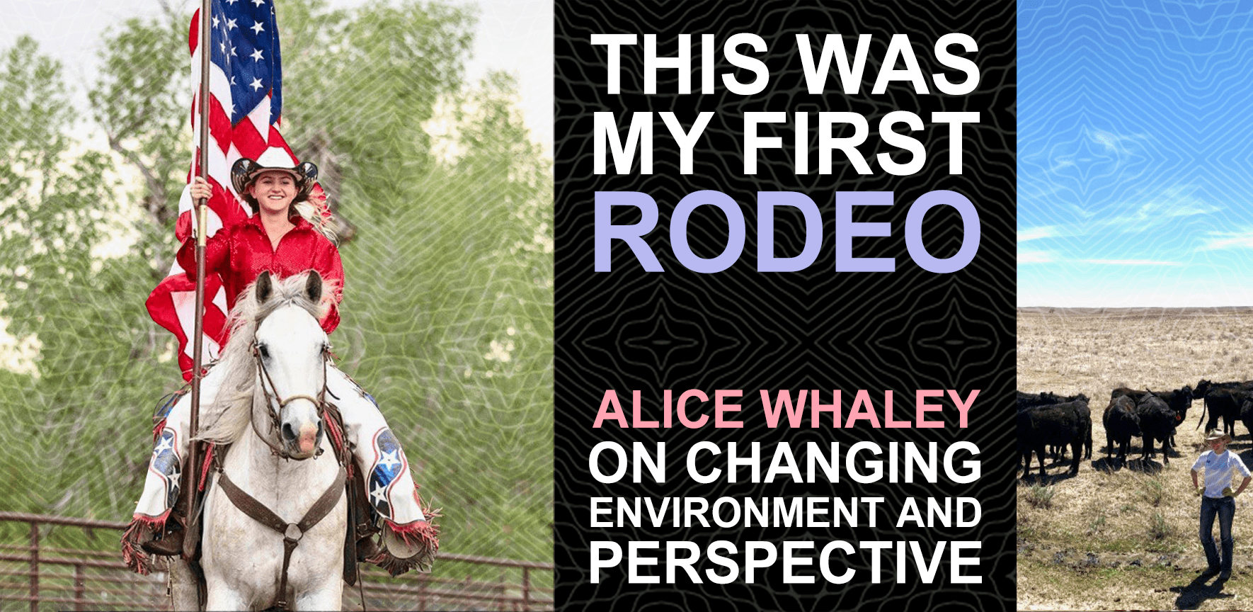 Alice Whaley riding a horse blog graphic